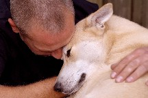 10 Reasons to Adopt an Adult Dog