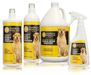akc professional strength stain & odor remover