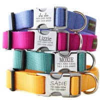 unique designer dog collar